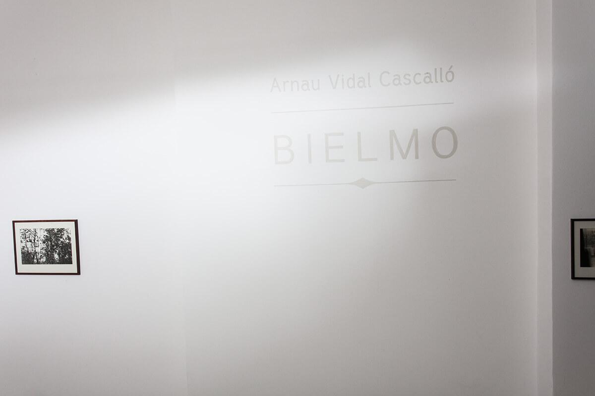 Kadr zwystawy Bielmo.