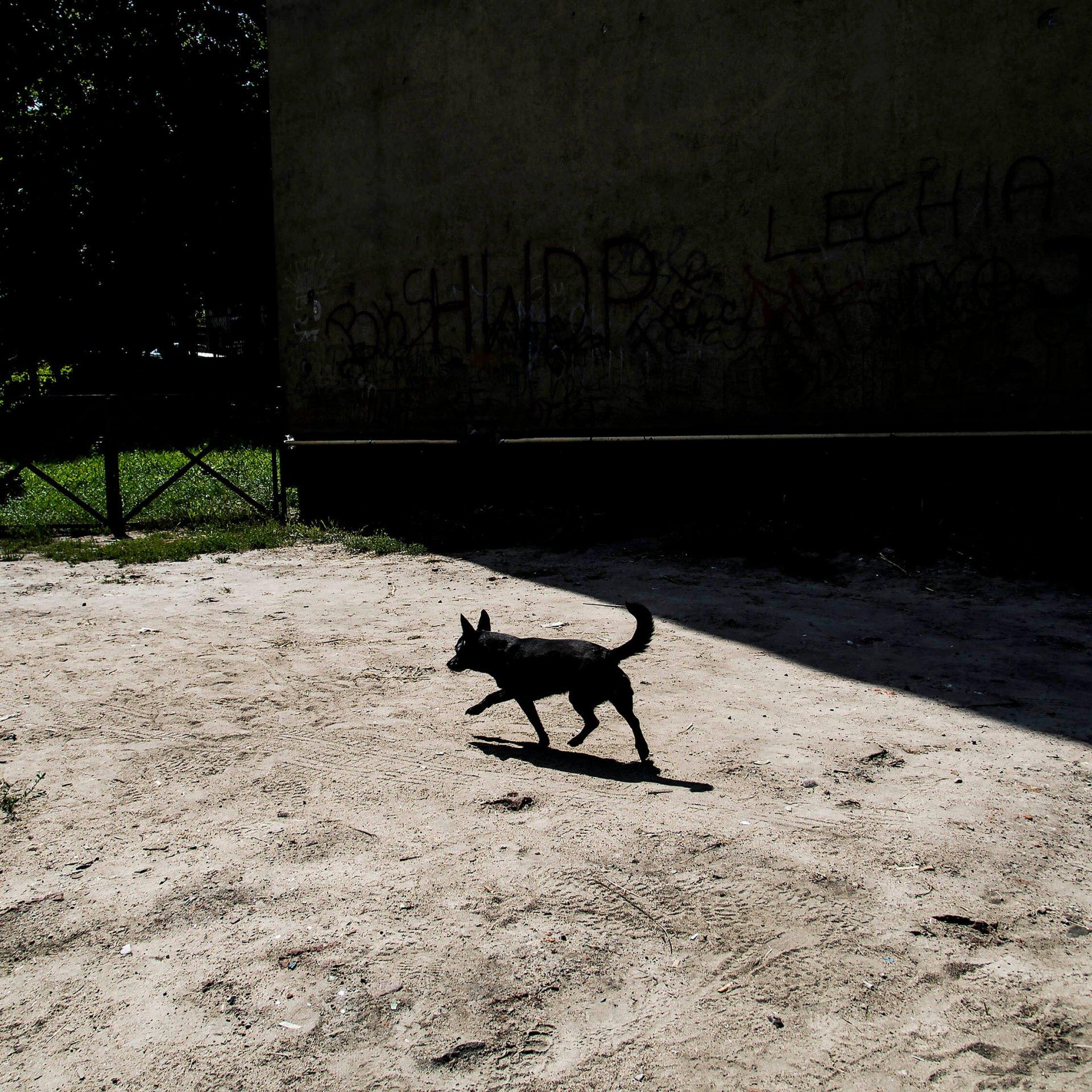 Kursy Artystyczne we Wrocławiu w Ośrodku Postaw Twórczych