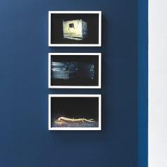 Wiszące naścianie obrazy wystawy podtytułem Przyjdzie noc.