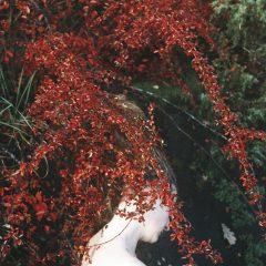 Postać pod czerwonolistnym krzewem.
