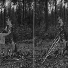 Dwie fotografie prezentujące prace leśne