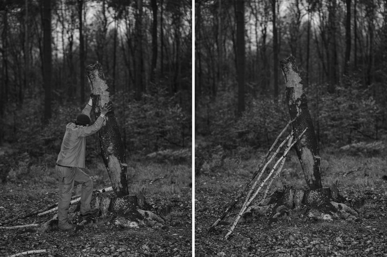 Dwa zdjęcia prezentujące prace leśne
