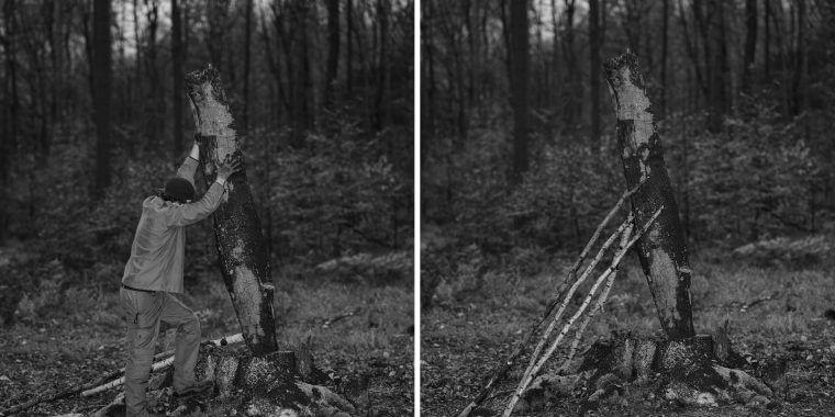 Michał Łuczak – Prace leśne – wystawa wMpM14 (20.8 – 30.10)
